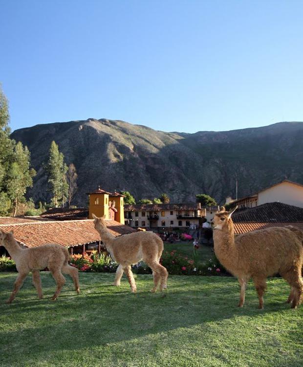 Jardines Yucay Sonesta Hotel Posadas del Inca Yucay Yucay, Perú